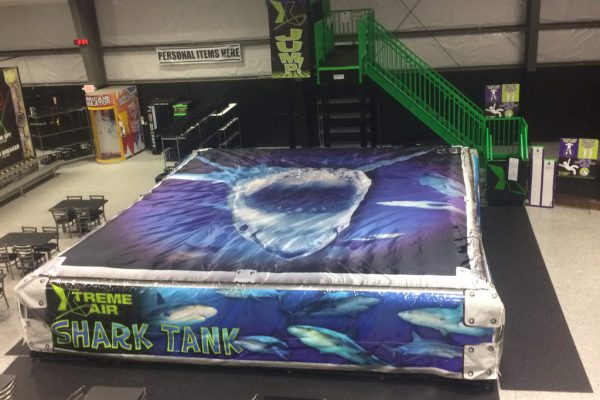 Who is brave enough to jump in the shark tank